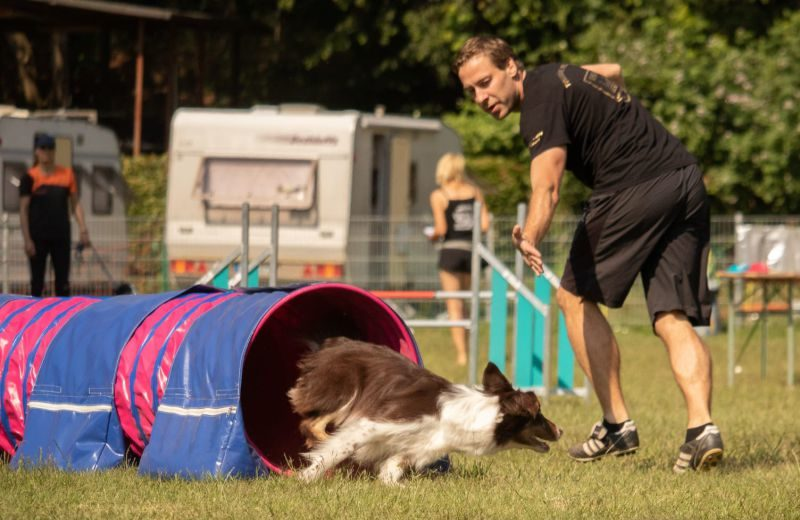 Stormarn-Dogs Agility Turniergruppe