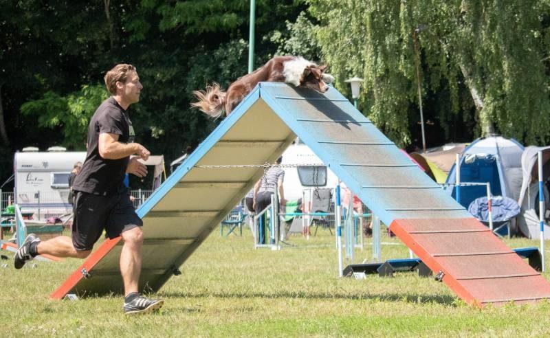 Stormarn Dogs - Stefan Hanßen leitet die Agility Turniergruppe in unserem Team