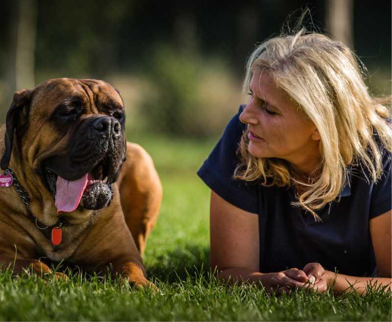 Hundeschule Stormarn Dogs - Astrid Stennei - Expertin Verhaltensberatung