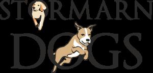 Stormarn Dogs   Ihre Hundeschule in Ammersbek